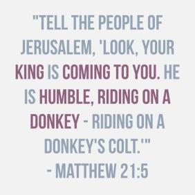 matthew 21:5